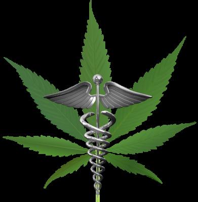 Cannabis_leaf_4