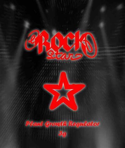 Raeuchermischung RockStar