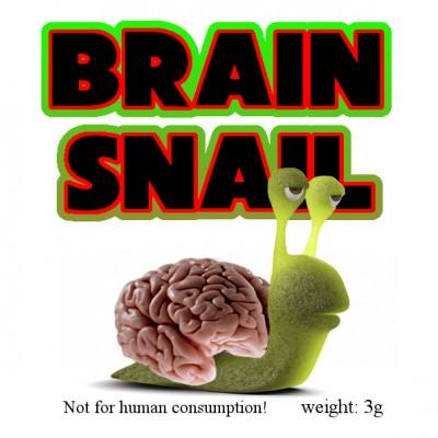 Brain Snail 3g Raeuchermischung