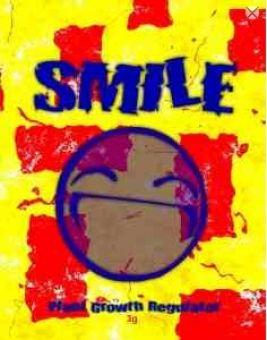Raeuchermischung Smile 3g