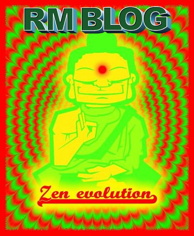 Zen Evolution Raeuchermischung 3g